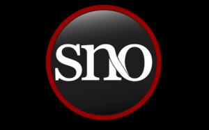 snologolarge